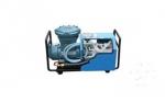 矿用隔爆型电动泵 型号 LGB-8L 防爆电动泵