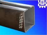 天津鼎舜廠家直銷專業生產加工定制C型鋼