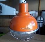 成都锐娜机电三防灯工矿灯防水防尘防腐棱晶玻璃透光罩