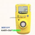 加拿大BW GAXT-M便攜式一氧化碳檢測儀CO煤氣檢測儀報
