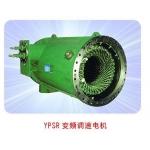 YPSR变频调速电机