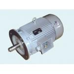 西南 宜宾 Y-W塔式起重机液压泵三相异步电动机
