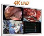 史赛克荧光PP监视器FS-P3102DS超高清4K分辨率