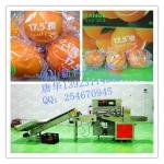 精品袋子水果包装机械,广东品牌厂家高速水果包装机械