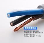 中度柔性雙護套屏蔽拖鏈電纜CF881 IGUS