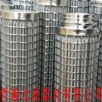 哲瀚专供不锈钢滤芯 折叠滤芯 大流量耐高压滤芯 304 31