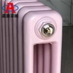 新型钢二柱暖气片 GZ203钢二柱暖气片图片 钢制柱型暖气片