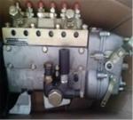 20裝載機用濰坊4102柴油發動機2400轉噴油泵廠家電話