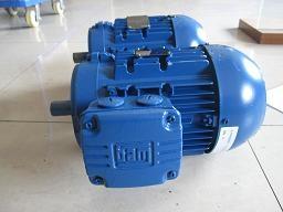 意大利AIRVIBRA振動電機TS2234