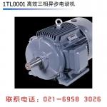 西门子电机贝德电机西门子贝得电机1TL0001-315L-2