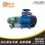 成都 泊头 铁泉泵业  WCB30型 齿轮油泵 油泵价格