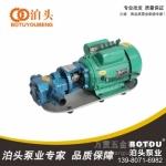 泊头 宏辉齿轮油泵 单相油泵电动机WCB-75