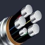 天津小猫电线国标 YJLV22铝芯钢带铠装电力电缆