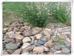 陕西铜川水生态修复用双绞合格宾石笼厂家