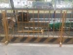 专业各种围栏定做 东莞施工围栏现货直销