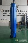 1142系列高壓潛水電動機|3KV潛水電機供應