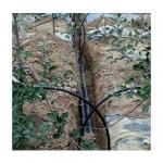 商丘果樹水肥藥一體化設備安裝指導