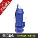 上海 银江 WQX型高扬程工程污水泵WQ10-35-2.2