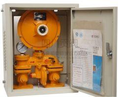 成都 华泰燃气调压箱RX25 DN25 燃气调压箱代理商