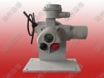 扬修电力电动角行程电动执行器DJW30-WK