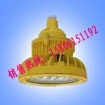 SBD87防爆LED投光灯 100W防爆LED照明灯