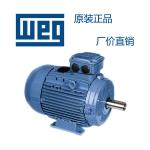 WEG電機浙江總代理