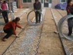 厂家热销镀锌刺绳,浸塑刺绳,刀片刺丝
