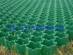 3.8公分塑料植草格