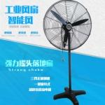 上海德东东玛DF-650T-187W单相调速工业强力摇头落地