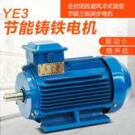 YE2-112M-4系列高效率三相异步电动机-上海电机厂