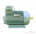 南京环球YZ系列起重及冶金用三相异步电动机