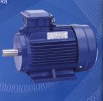 成都供應Y2系列三相異步電動機