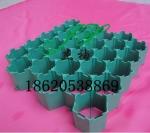 广东植草格厂家佛山植草格生产南海区植草格规格