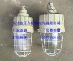 BAD82-L100H1Z护栏式防爆工厂灯 100W防爆灯