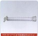 DGS-20/127Y矿用隔爆型荧光灯 成都沈海防爆灯具 价
