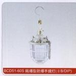 BCD51-60S隔爆型防爆手提灯 成都沈海科技 价格低质量