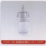 CCD51-250隔爆型防爆灯 成都沈海科技 性价比高 质量