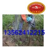 电动挖树机  ZGS-450电动挖树机