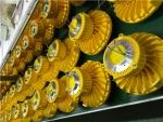 隔爆型應急燈 BCJ51-LED防爆應急燈