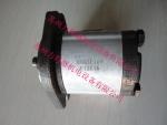 HONOR齿轮泵2GG1P04R