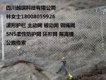 重慶RX-075被動防護網18008059926-重慶RX-