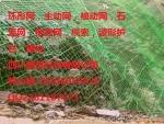 GPS2主动防护网\甘孜阿坝州边坡防护网、钢丝网厂家拦石网