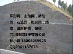 宜宾眉山南充乐山内江边坡防护网、拦石网批发市场、钢丝网厂家