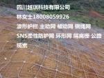 钢绳网、供应重庆GPS1主动防护网/GPS2主动菱形防护网厂