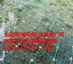 遂宁、万源GPS2主动防护网厂家、安装