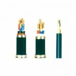 额定电压0.6/1KV及以下聚氯乙烯绝缘电力电缆 价格实惠