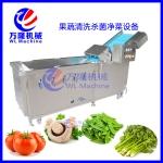 洗菜機 多功能氣泡式洗菜機 蔬菜氣泡翻浪清洗機 臭氧洗果機