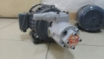 ROP-220HA维良油泵