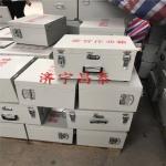 300发雷管炸药防爆箱 厂家直销便捷式爆炸箱