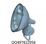 ZT6900-J1000防水防尘防震投光灯